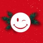 felices-fiestas-Palibex-2014-