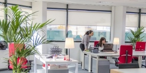 oficina fast palet